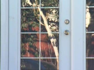 Portland, Oregon, Mom Kills Intruder Discovered in Kid's Bedroom