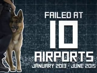 Bomb K9s Fail Dozens of Tests at 10 Large US Airports, Records Show