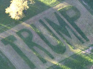 Man Makes Lawn Trump Message After Signs Repeatedly Stolen