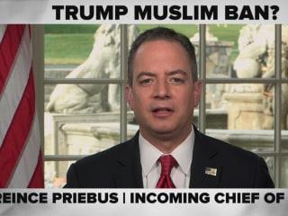 MTP ICYMI: Reince on Muslim Ban, Sanders on Fighting Bigotry