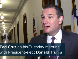 Cruz on Trump Meeting: 'I'm Eager to Help Any Way I Can'