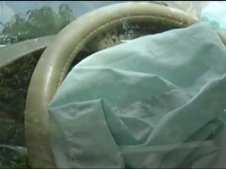 Takata Airbag Recall Taking Too Long, Regulators Say