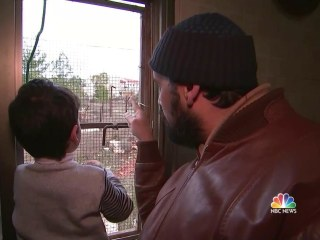 A Tale of Two Sides of a Fence: Inside an Israeli Settlement