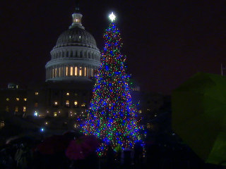 Watch Paul Ryan Light 'The People's Tree'