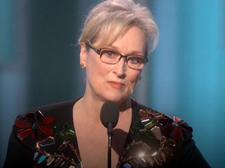 Meryl Streep Calls Out Trump for Imitating Disabled Reporter