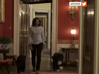 Michelle Obama bids farewell, posts video of herself with Sunny and Bo