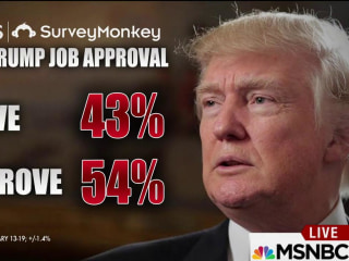 Trump approval stands at 43 percent: poll