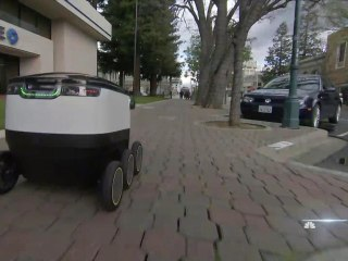 Food Delivery Via Robot? Firm Aims to Revolutionize Take-Out