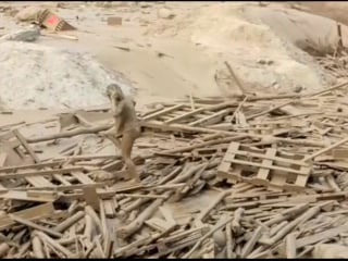 Residents Struggle to Escape Mudslides Triggered by Heavy Rains