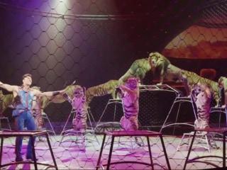 After 146-Year Run, Ringling Bros. Circus Takes Final Bow