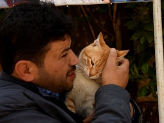 """""""Cat Man of Aleppo"""" Rebuilds Sanctuary for Abandoned Pets"""