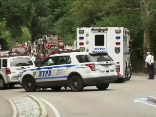 One Year Later, NYPD Still Searching for Clues in 2016 Central Park Explosion