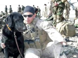U.S. Marines Pay Tribute to Ailing Military Dog