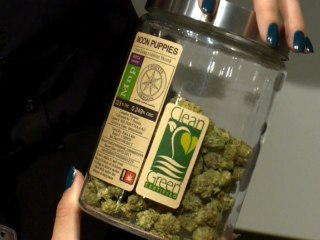 Eclipse Creating Record Demand for Marijuana, Liquor in Oregon