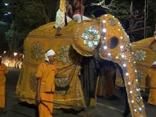 Parade of Elephants Kicks Off Festival in Sri Lanka