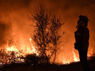 Deadly Wildfires Kill at Least 36 in Portugal