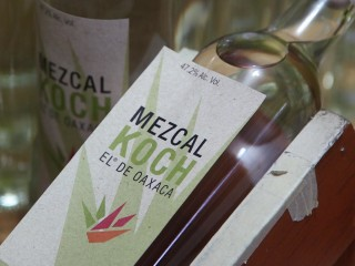 Forget America: Distilling the Mexican dream one bottle at a time