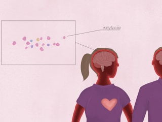 How your brain responds to being in love