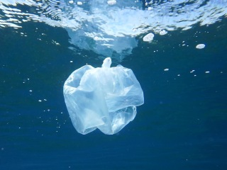 A mutant plastic-eating enzyme could help solve the world's waste problem