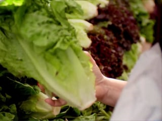 Avoid romaine lettuce, CDC warns, amid E. coli outbreak