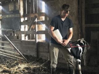 'Hard to believe it's over': The last days of an American dairy farm