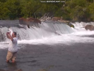Alaska man caught trying to take selfies with feeding bears