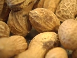 New peanut allergy drug offers hope