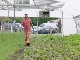 This Detroit farm is helping former inmates stay out of prison