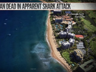 Tourist killed in apparent shark attack in Hawaii