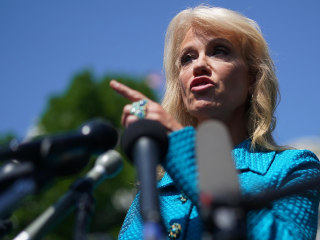 Watch Trump aide Kellyanne Conway ask reporter: 'What's your ethnicity?'