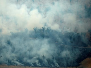 Amazon reaches tipping point as wildfires continue