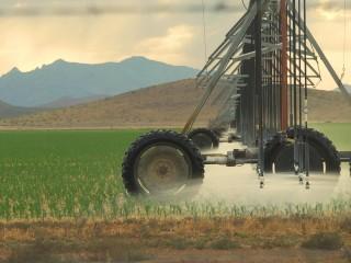 Draining Arizona: Mining for water in the desert leaves residents' wells dry