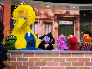 Big Bird, Elmo and TODAY celebrate 50 years of Sesame Street