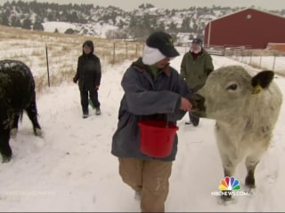 Nuns Run Colorado Cattle Ranch
