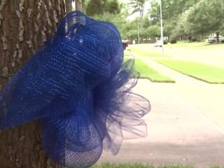 Community Goes Blue for Fallen Officer