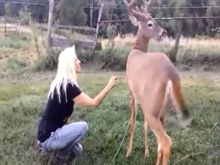 Family Fights For Pet Deer