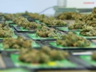 First Retail Pot Stores To Open July 8th In Washington State