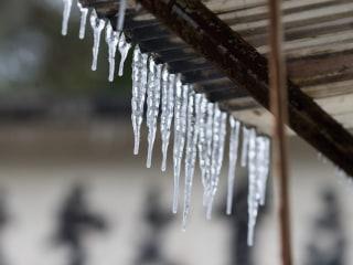 Unusually Cold Weather Kills Dozens in Eastern Asia