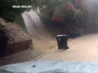 Trash Can With A Mind Of Its Own Navigates Flooded Street in LA