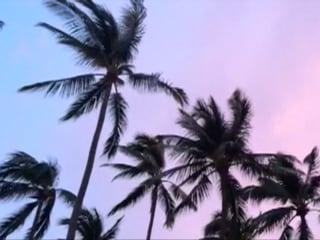 Mexico's Pacific Coast Prepares for Hurricane Patricia