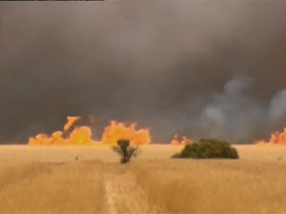 Spectacular Wildfire Threatens Towns, Farms in South Australia
