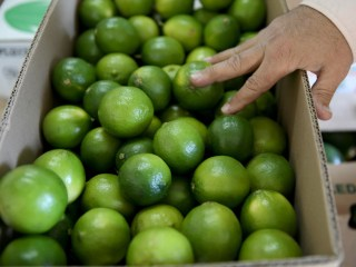 Price of Limes on the Rise