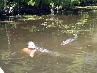 6 Speed Reads: Man Hand-Feeds Wild Alligators