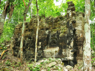 Two Ancient Mayan Cities Discovered Deep in Mexican Jungle