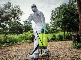 Where Did Ebola Come From? Likely One Person, Gene Study Finds