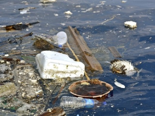 Math Might Help Nail Oceans' Plastic 'Garbage Patch' Polluters