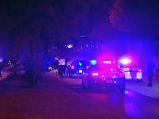 Six Killed as Car Hits Median, Slams Into Tree