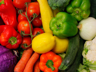 Study: Diet Program Rewires Brain to Crave Healthy Food
