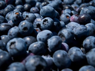 Antibiotics Suspected in Girl's Allergic Reaction to Blueberry Pie