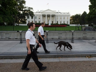 22 People Arrested for White House, Capitol Security Breaches Since 2014